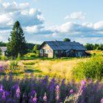 рост спроса не загородную недвижимость