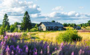 рост спроса на загородную недвижимость