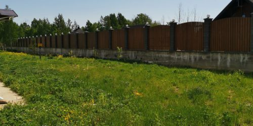 Зеленый участок за домом в Ломоносовской усадьбе