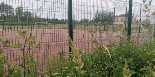 Спортивная площадка в Ломоносовской усадьбе